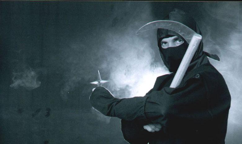 Ниндзюцу — боевое искусство стратегического шпионажа и войсковой разведки.